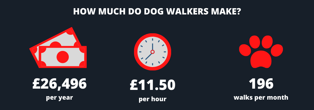 Infographic showing dog walkers earn on average £26,496 per year and £11.50 per hour by making 196 walks per month.